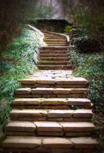 Beatrix Farrand steps, Dumbarton Oaks, Washington DC.  Photo credit: http://dirt.asla.org/2013/03/11/beatrix-farrand-gets-a-fresh-look/