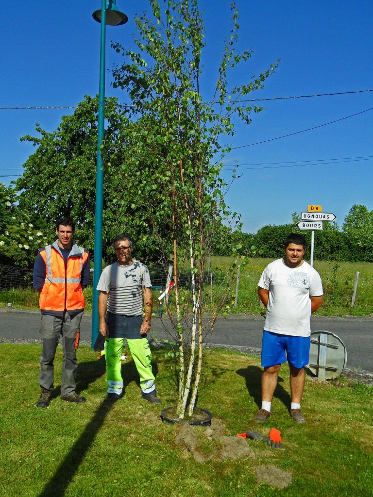 Sebastien, Marc and Damien l-r in front of one of the newly planted birches, Tostat May 2015