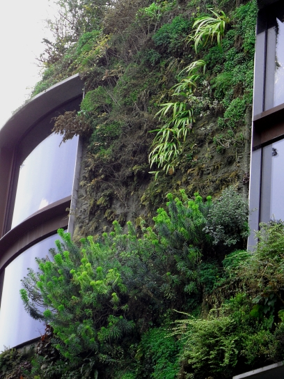 Paris wall Brannly 4 216