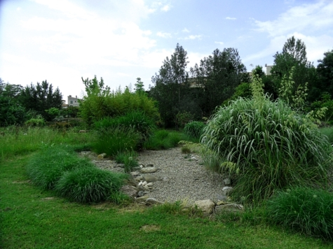 Shingle flow into the grasses, La Petite Pepiniere, Caunes Minervois, June 2016