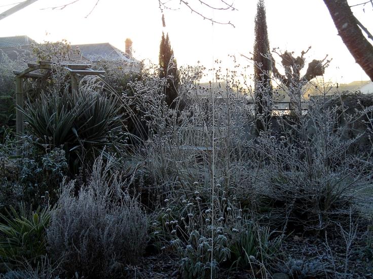 winter-dawn-117
