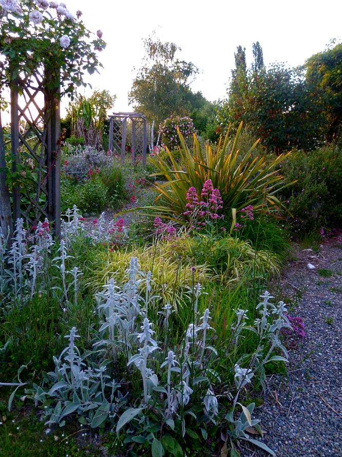 May garden 3 517