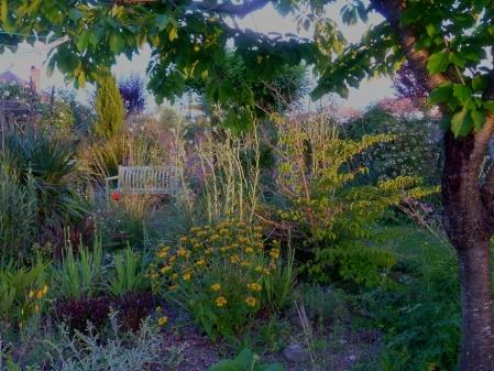 May garden 517