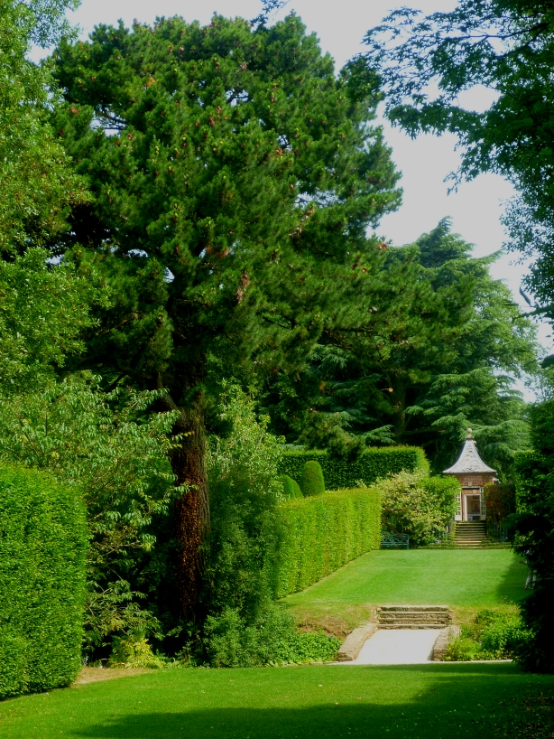 Hidcote view 617
