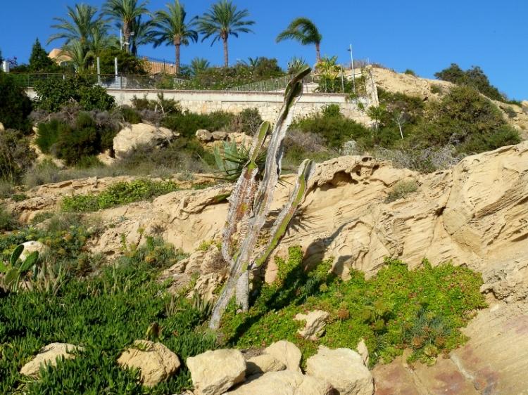 Alicante headland 2 1017