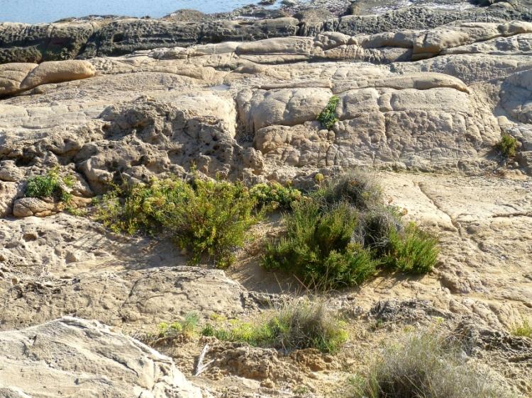 Alicante headland 3 1017