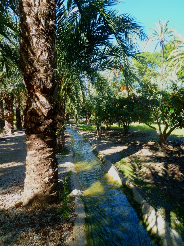 Alicante Elche Palmoral 2 1017
