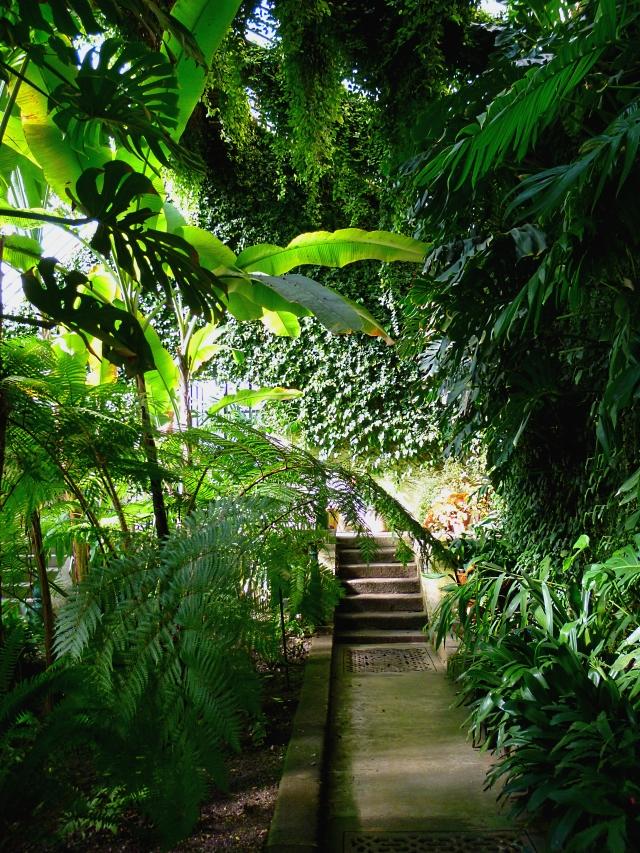 Madbot greenhouse 0218