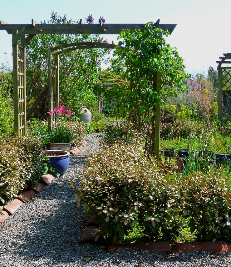 Garden 2 0418