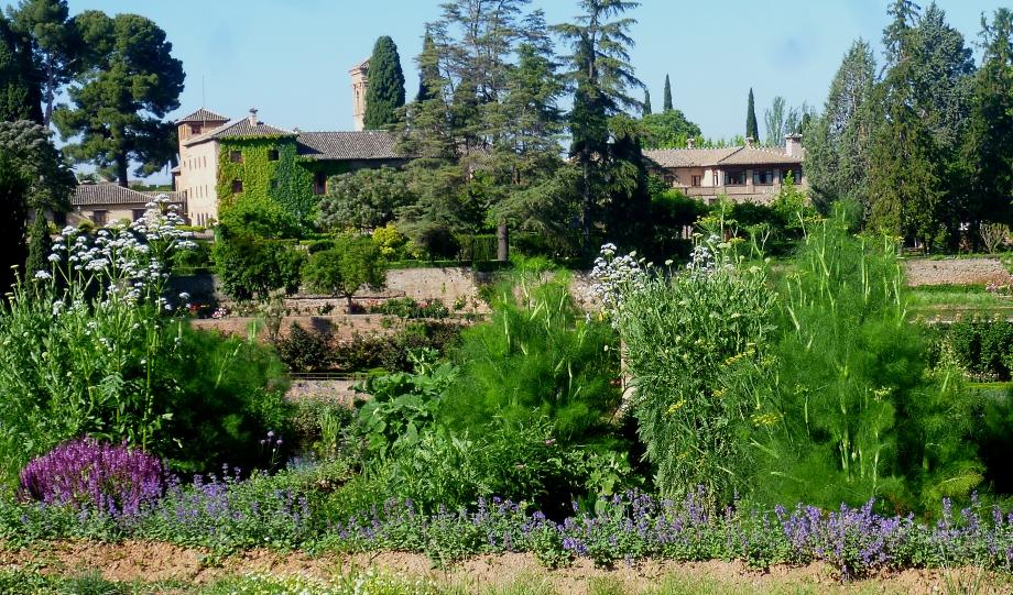 Granada Gen 16