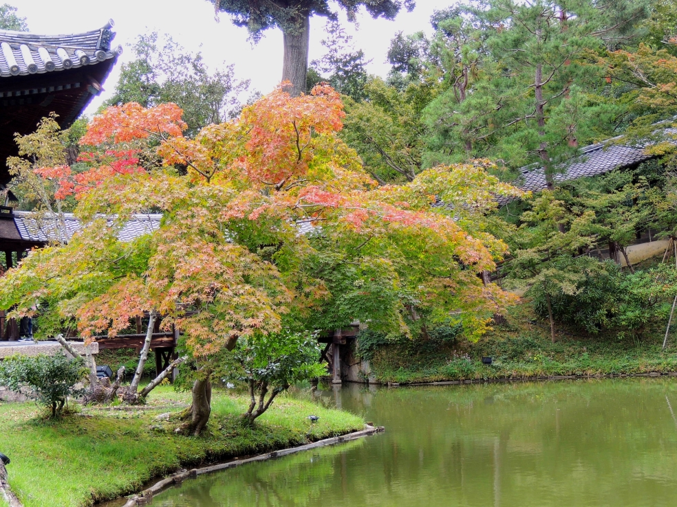 kodaiji autumn 2