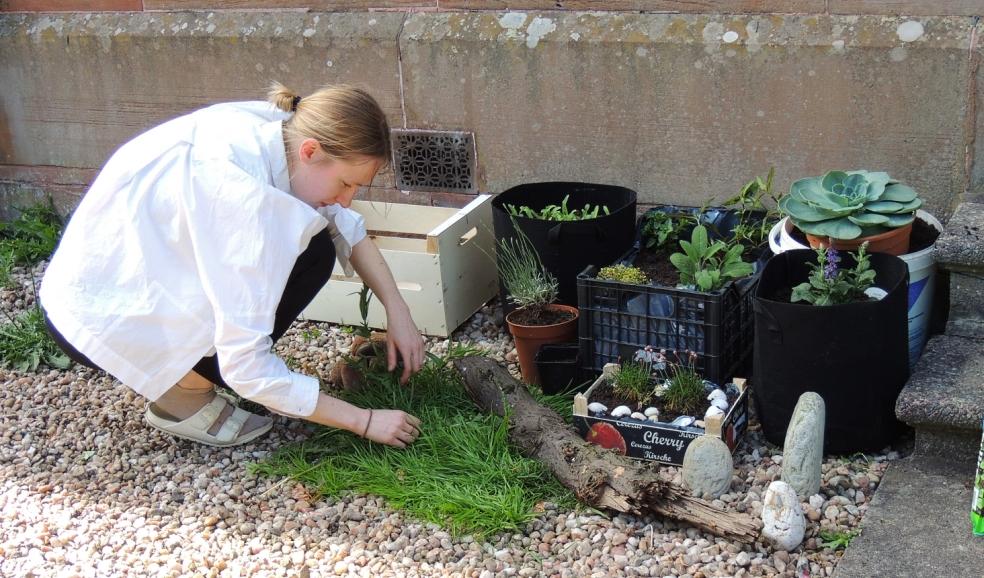 Glasgow gardening 0519
